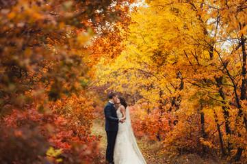 Wedding couple on a walk in the autumn park