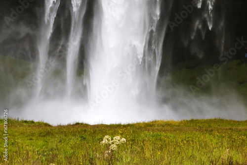 Closeup of waterfall against green grass. Icelandic landscape. - 167806726