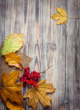autumn leaf on wood background (top view)