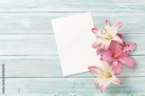Wall mural Colorful lily flowers and greeting card