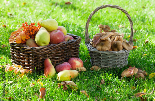 Autumn food - 167827389