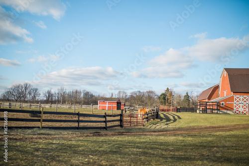 Foto op Canvas Cappuccino Farm