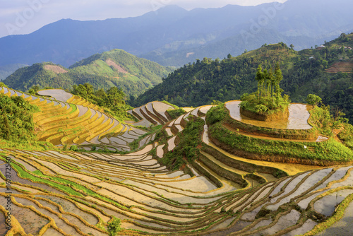 Poster Honing Beautiful Hoang Su Phi Ha Giang province in Vietnam