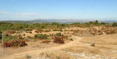 Deurstickers Blauwe hemel Paysage de Provence en été
