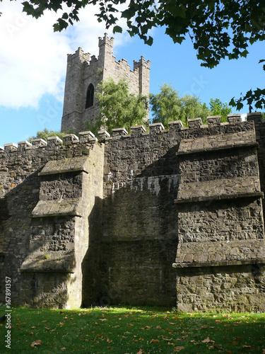 Stadtmauer in Dublin mit Turm von St. Audoen's Poster