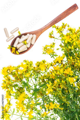 Natural capsules from St. John's wort Photo by ArtCookStudio