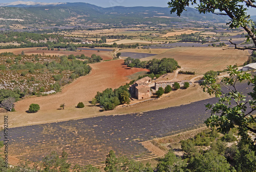 Fridge magnet Aerial view of Provence France