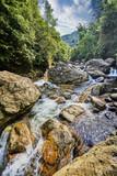 beautiful waterfall in green viet nam asia