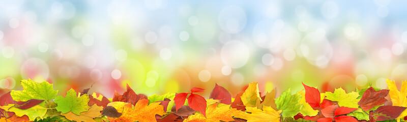 Herbst 125