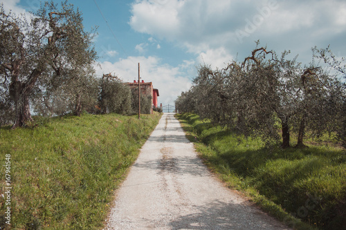 Foto op Canvas Bleke violet Landschaft
