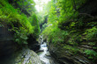 Waterfalls through rock gorge at beautiful Watkins Glen State Park, New York - 167969763