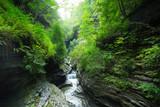 Waterfalls through rock gorge at beautiful Watkins Glen State Park, New York