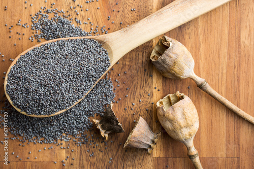 Dried poppy heads and seeds. - 167976720