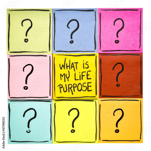 What is my life purpose? Poster