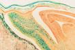 Cell microscopic- macro weevil rye