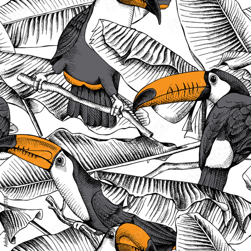 Fototapeta  Seamless pattern with image of a Toucan and Banana leaves. Vector illustration.