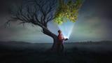 Bringing life to a tree - 168241908