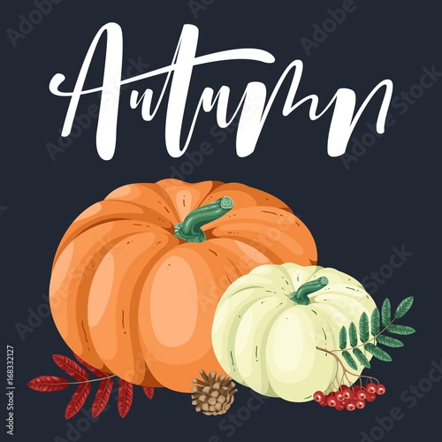 Hand drawn illustration with pumpkin and lettering. Poster