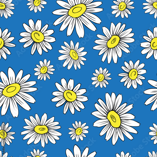 Chamomile wild field flower isolated on blue background, hand drawn daisy sketch vector doodle illustration, seamless floral pattern for design package tea, cosmetic, medicine, textile, decor fabric