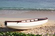 Small white boat docked in the sand in a tropical beach with gentle foaming waves rolling onto the shore
