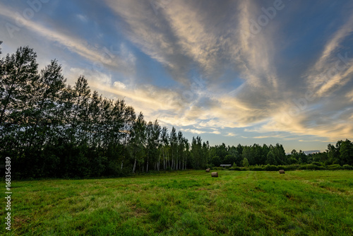Fotobehang Beige countryside fields in summer with dramatic sunset