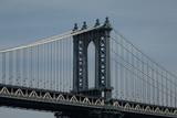 bridge in Manhattan