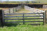 Parc à moutons - 168416704