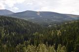 Widok Karkonoszy latem/View of The Karkonosze Mountains in summer, Lower Silesia, Poland