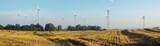 Wind turbines on a field in summer