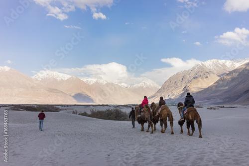 Fotobehang Kameel Tourists both riding camels and walking enjoying the scene in Hunder sand dunes, Nubra valley, Ladakh