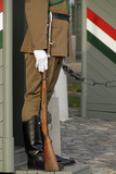 Palace guard in Budapest, Hungary