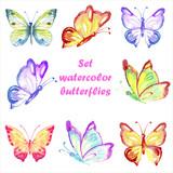 Set multicolored watercolor butterflies