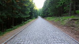 Leśna brukowana droga na górę Śnieżnik - 168564152
