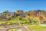 Archaeological and historical objects in Rome, united by the name - Roman Forum. Italy. - 168564715