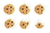 Bitten  chip cookie vector illustration set - 168567109