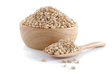 pearls barley grain seed on background - 168582727