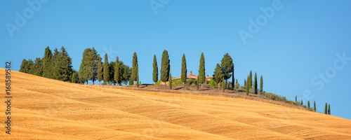 Deurstickers Toscane Beautiful typical panorama landscape of Val d'Orcia in Tuscany with a row of cypress trees in summer, Val d'Orcia, Tuscany, Italy