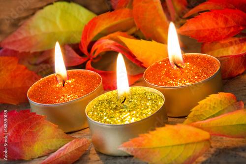 Herbst - Dekoration - 168590159