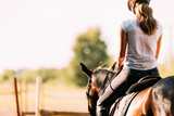 Fototapeta Konie - Picture of young pretty girl riding horse © nd3000