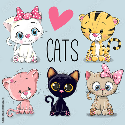 Set of cute cats - 168629315