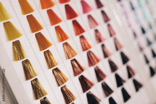 Aluminium Kapsalon Samples of hair with different shades of hair color