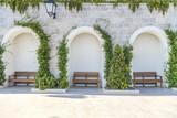 три скамейки у стены с зеленью