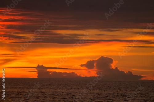 Poster Oranje eclat EL ENCANTO DE LAS ENCANTADAS (Islas Galápagos)