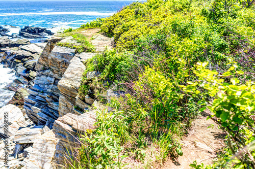 Trail on cliff with green bushes by Portland Head Lighthouse in Fort Williams pa Poster
