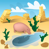 Pink hippo drinking water from oasis in Africa
