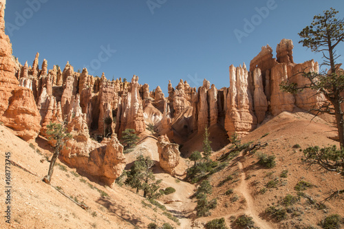 Fotobehang Diepbruine Canyons in Bryce Canyon