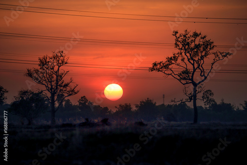 Foto op Canvas Baksteen Sunset in the morning.