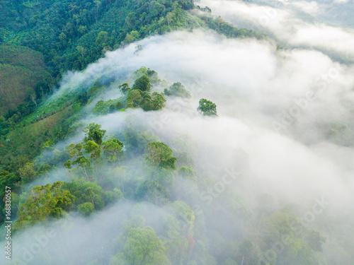 Fotobehang Bleke violet Landscape of misty mountain forest covered hills at khao khai nui