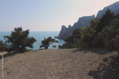 Fotobehang Cappuccino landscape