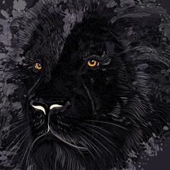 Lion illustration in dark colors for design